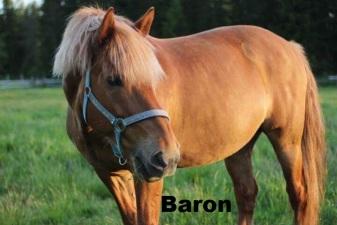 Baron med namn