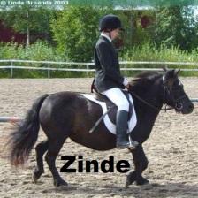 zinderella-jeng med namn